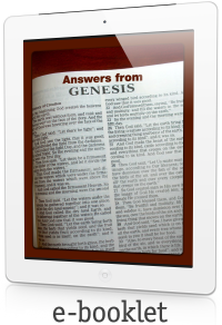 Answers From Genesis